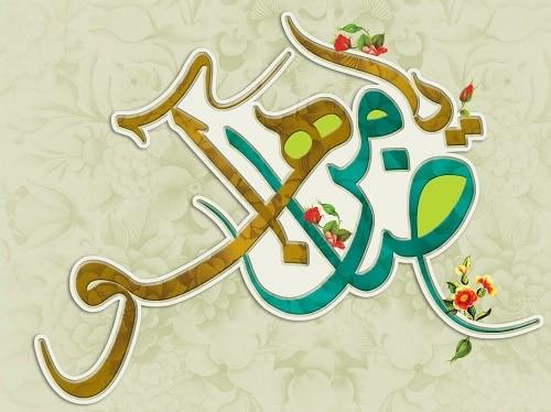 تک ترانه علی فانی  امام ضامن آهویی گم کرده راهم یا رضا ( ویژه محرم )